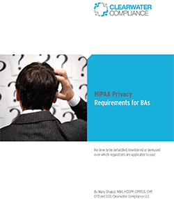 th_Clearwater-Compliance-Whitepaper_HIPAA-Privacy-Rule-Requirements-for-Business-Associates-FINAL1-1.png